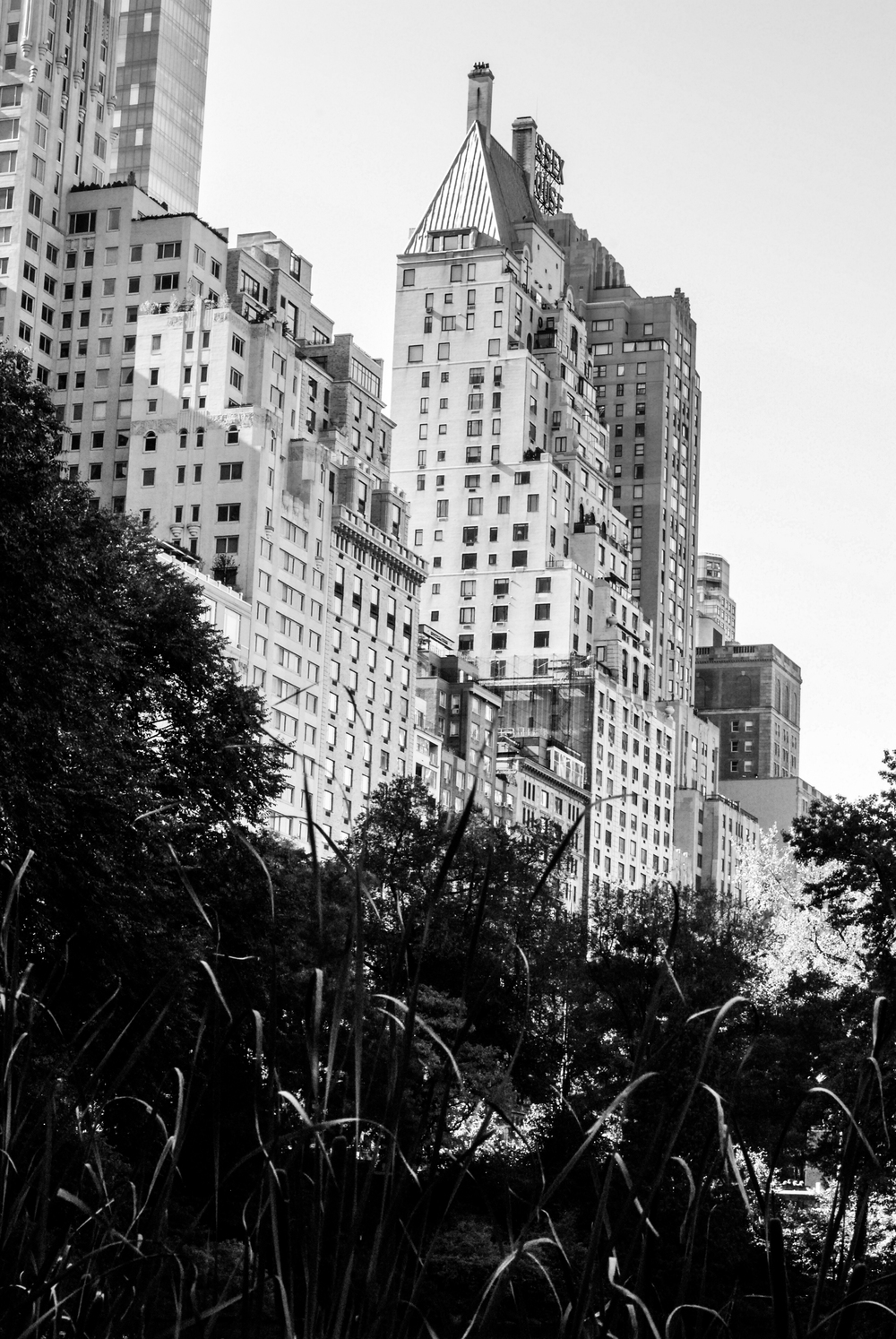 NYC_CityShots-0007.JPG
