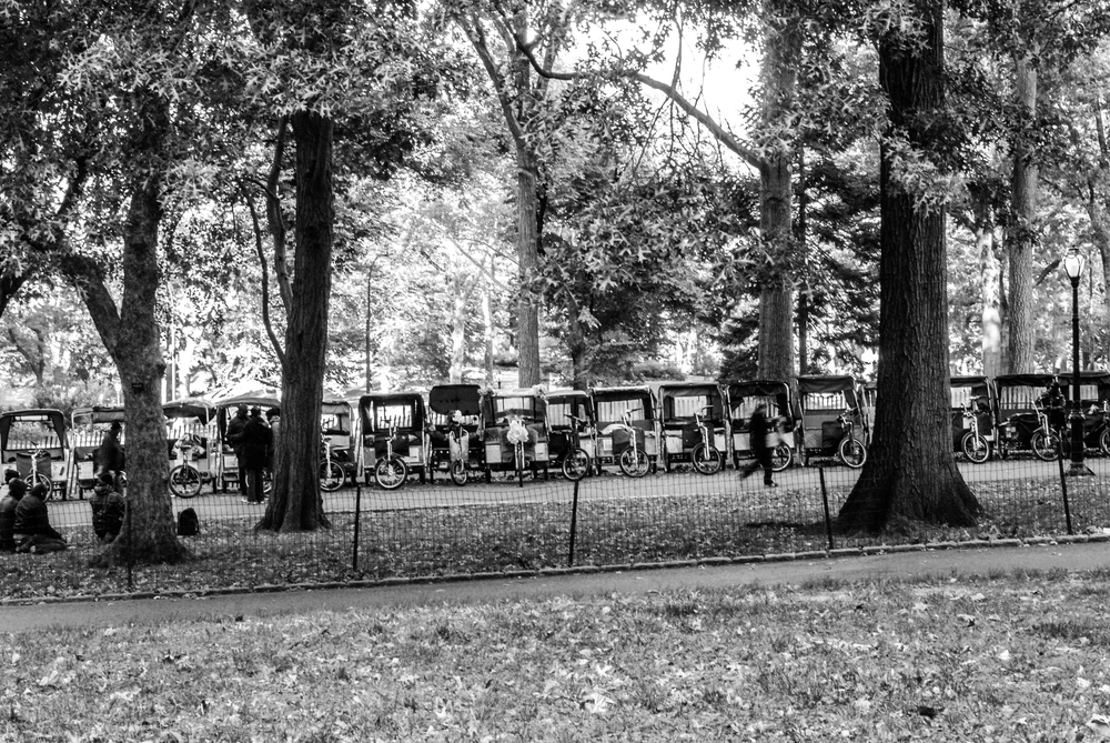 NYC_CityShots-0406.JPG