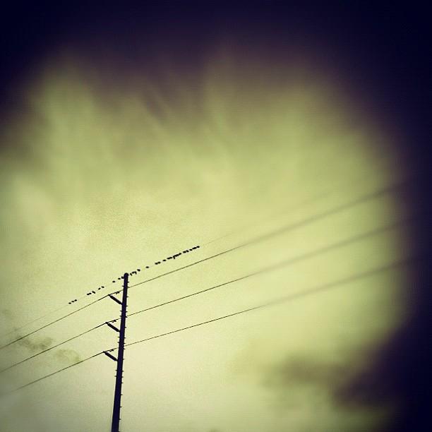 2012-01-09_1326146535.jpg