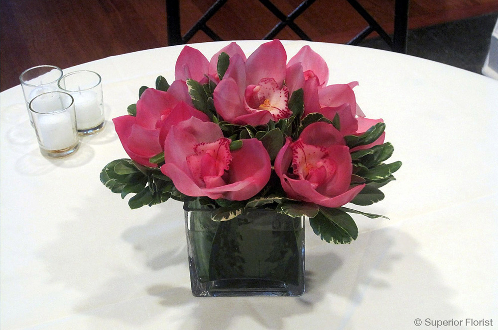 Superior Florist – Cocktail Tables: Floral arrangement of dark pink Cymbidium orchids and variegated Pittosporum in a small, glass cube vase.