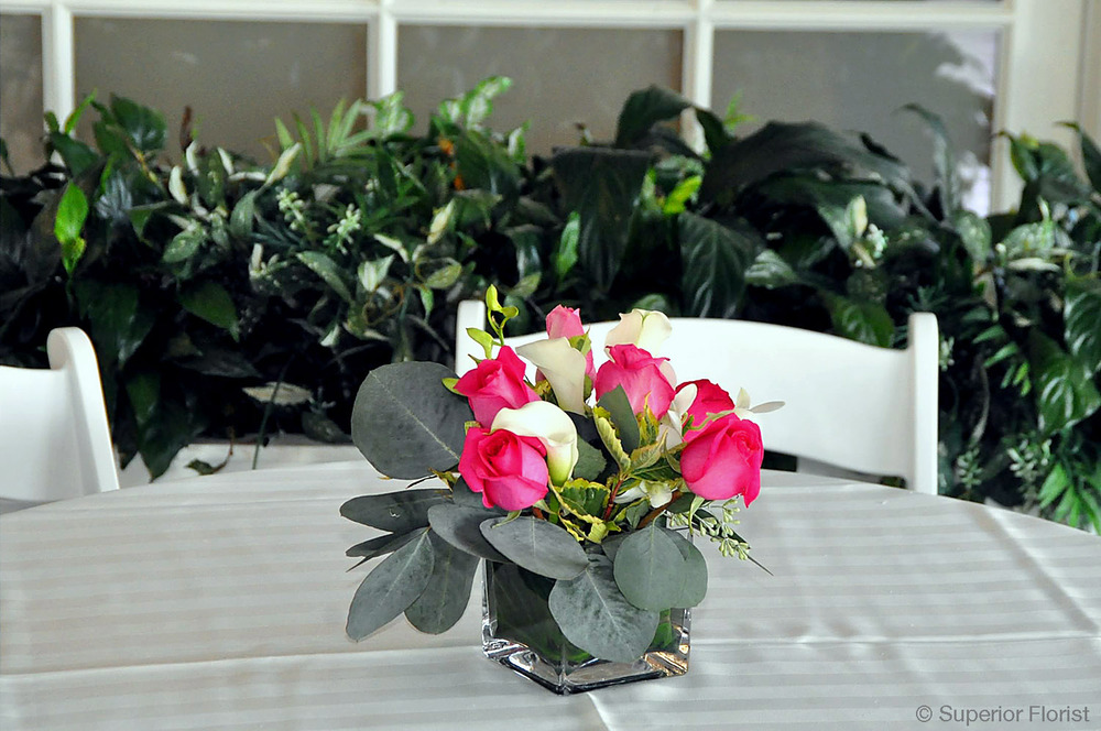Superior Florist – Cocktail Tables: Floral arrangement of dark pink roses, white mini-Callas and silver dollar Eucalyptus in a small, glass cube vase.