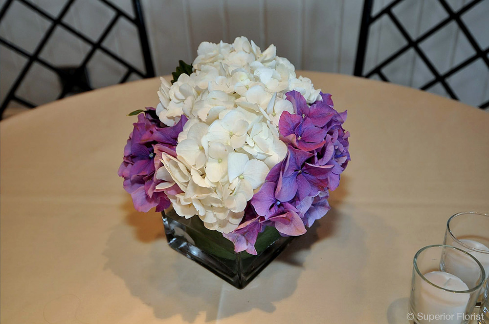 Superior Florist – Cocktail Tables: Floral arrangement of white and purple Hydrangeas.