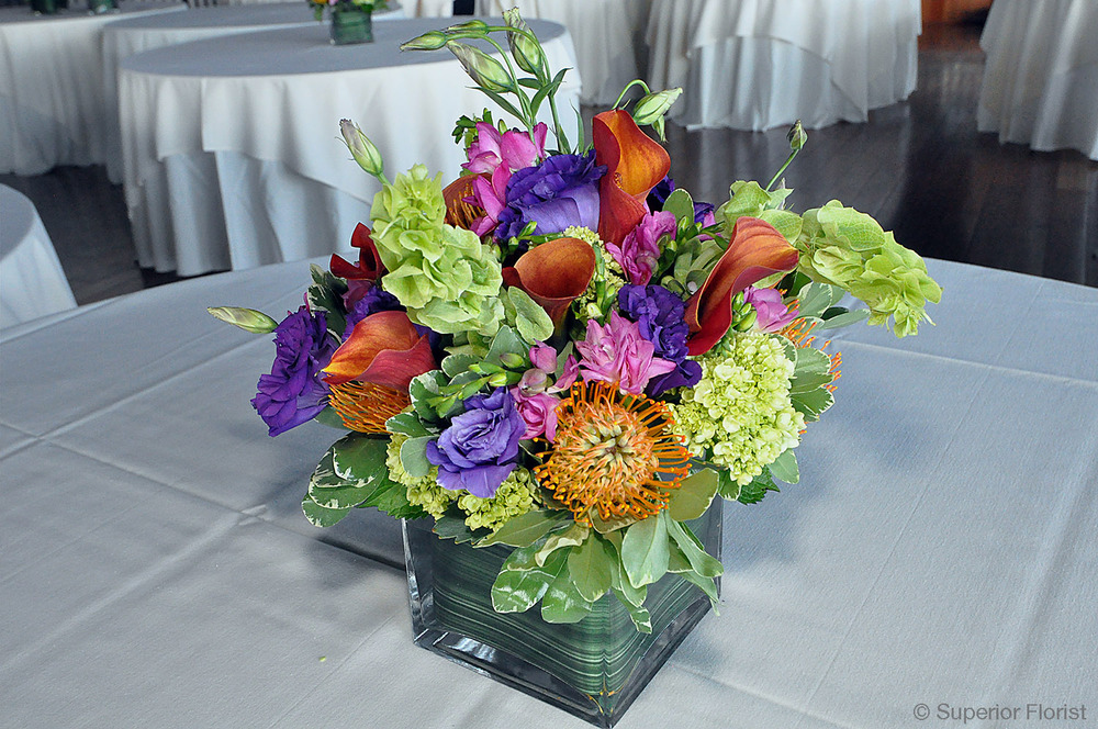 Superior Florist – Centerpieces:  Tropical breeze themed arrangement of pin cushion Protea, mango Callas, purple Lisianthus, Bells of Ireland and green Hydrangeas. Square, glass cube vase lined with leaf wrap.