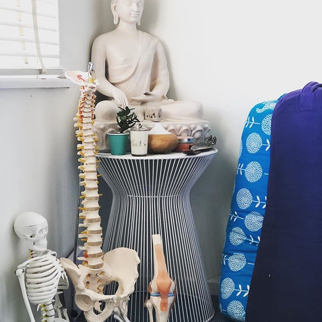 Sunday furniture shuffling and now I finally have a little yoga corner. Am I the only person who has a spine, a skeleton, and Buddha sitting side by side?  #anatomynerd #myyogacorner #ohdontforgetthekneejoint