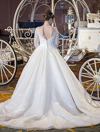 Cinderella limited edition Wedding dress 3.jpg