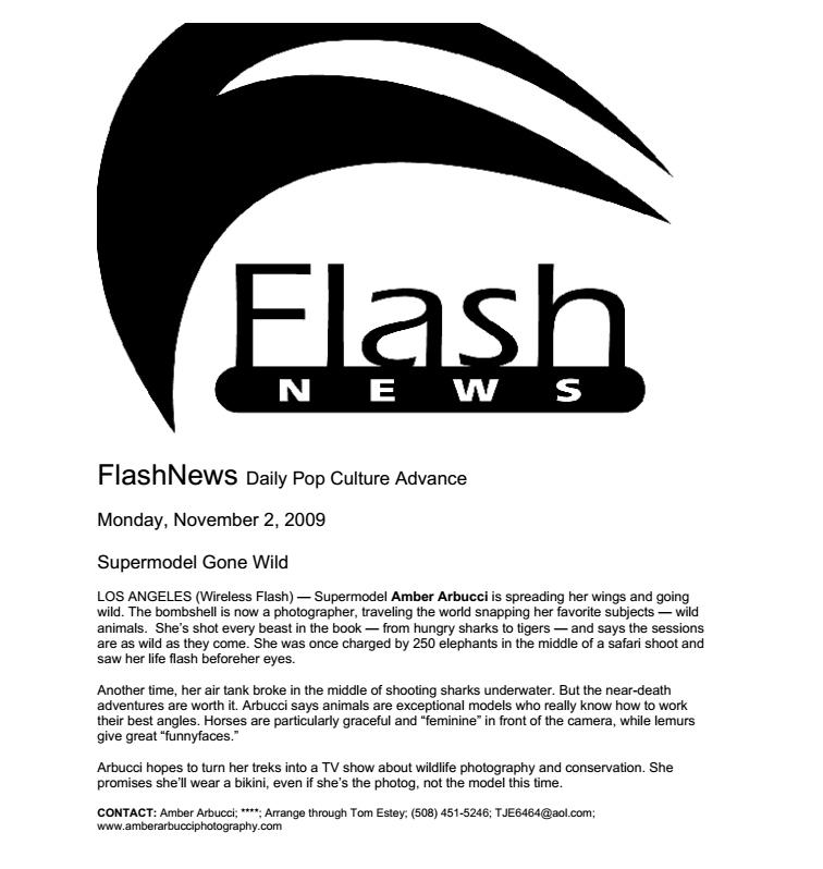 flash.jpg