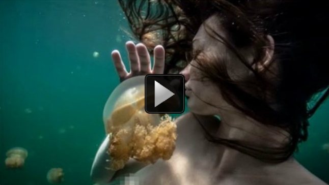 "May 8 (Bloomberg) –- Supermodel and Wildlife Photographer Amber Arbucci discusses modeling and her charitable work with the Waterkeeper Alliance. She speaks with Trish Regan on Bloomberg Television's ""Street Smart."" (Source: Bloomberg)"