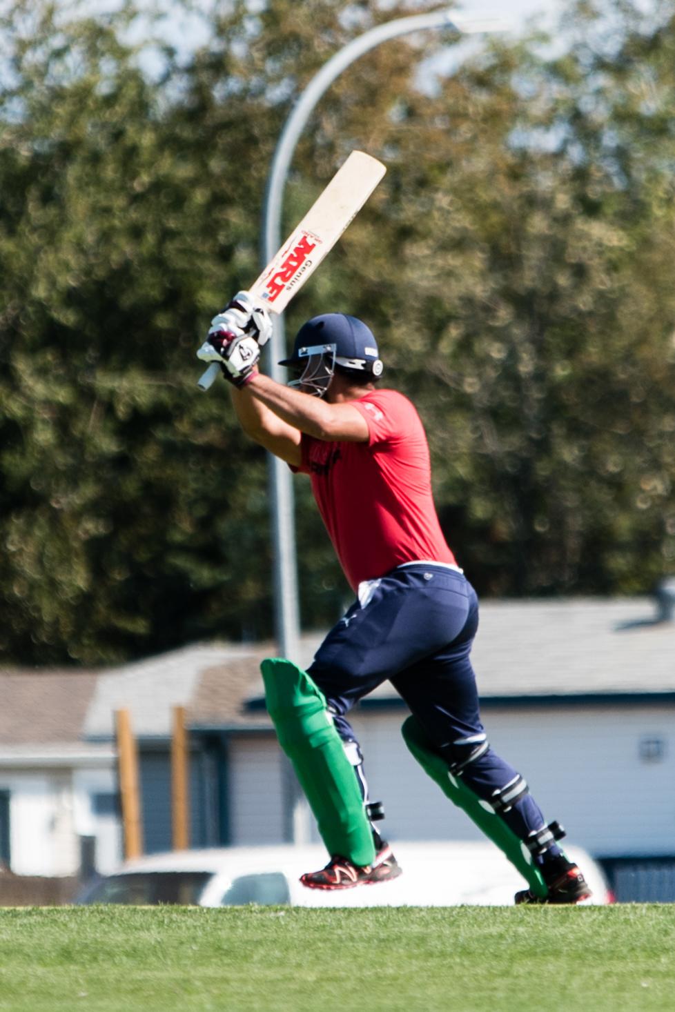 Cricket-0192.jpg