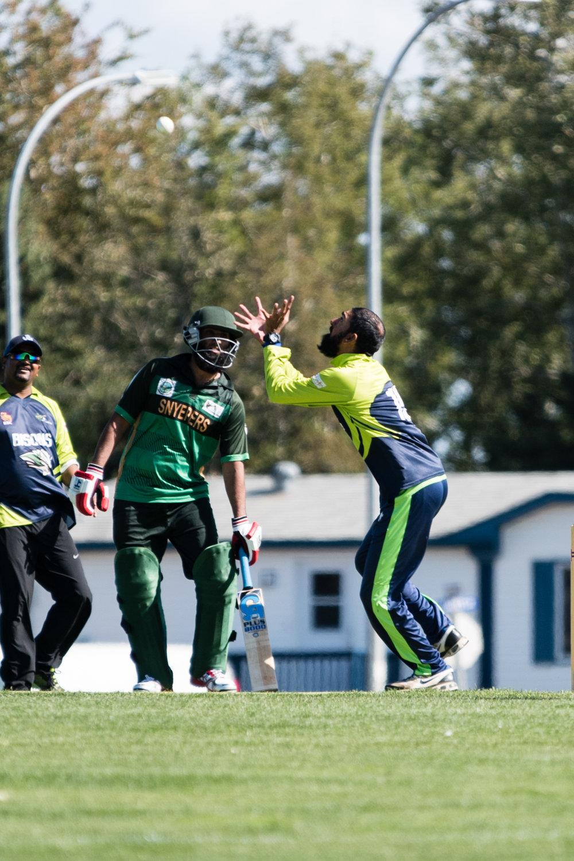 Cricket-0247.jpg