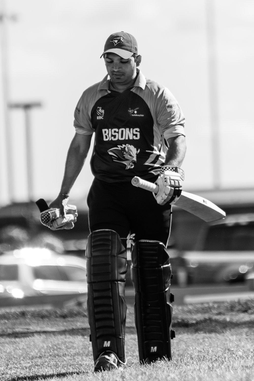 Cricket-0311.jpg