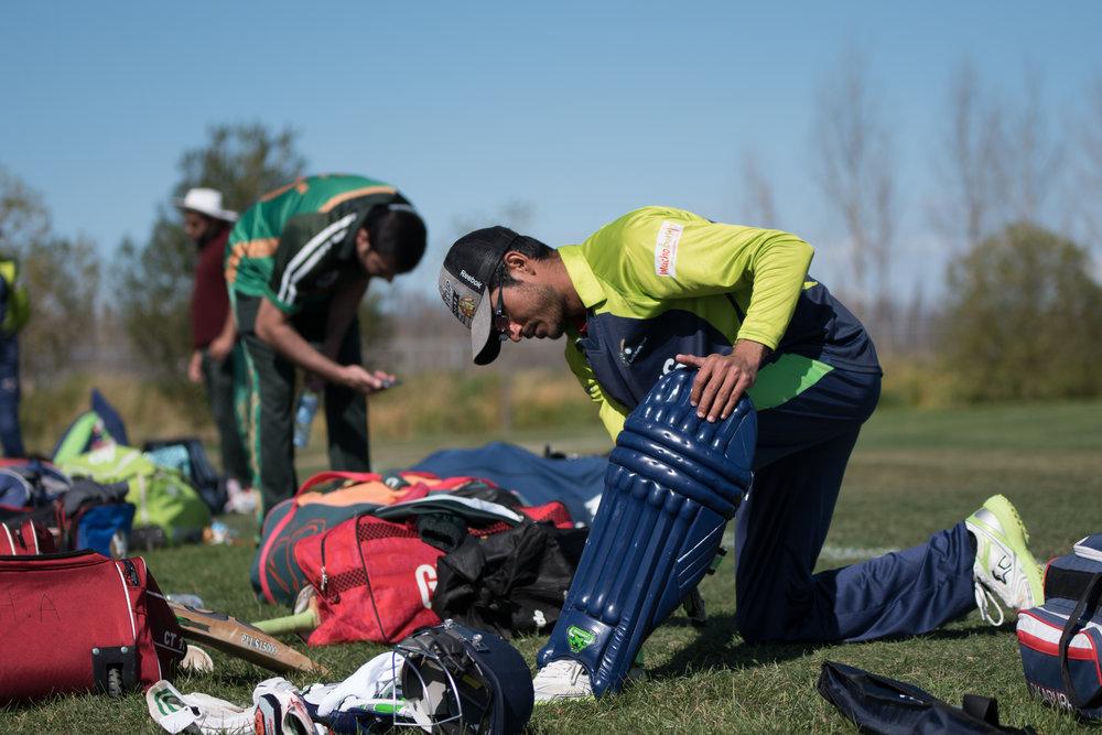 Cricket-0314.jpg