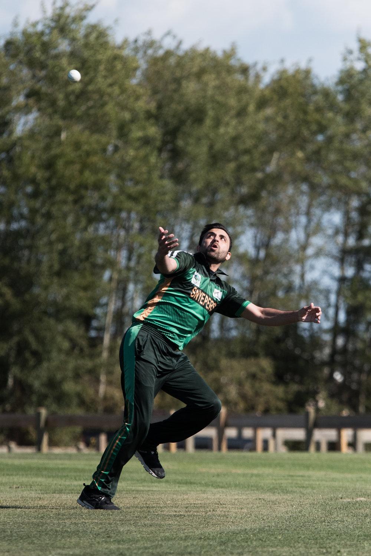 Cricket-0459.jpg