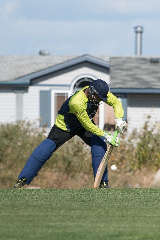 Cricket-0469.jpg
