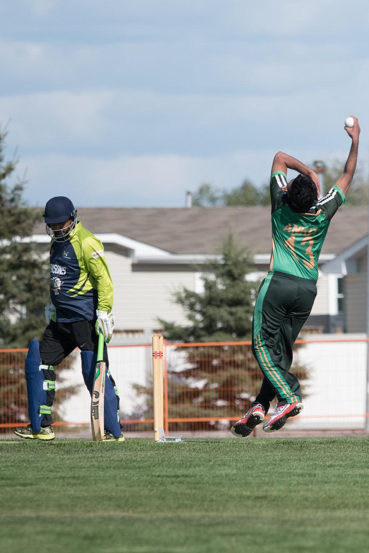 Cricket-0504.jpg