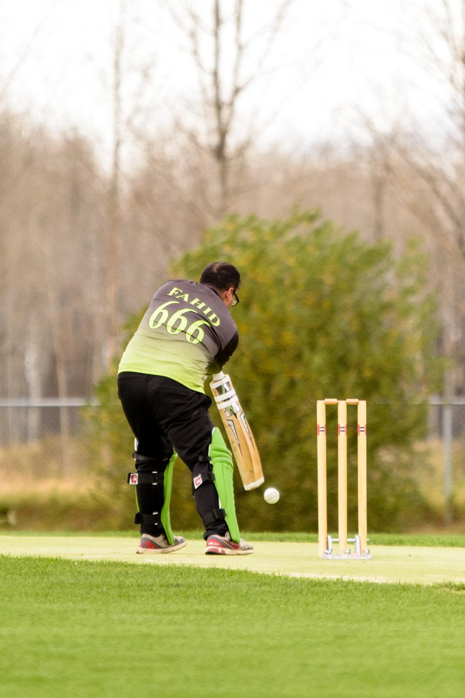 Cricket-0684.jpg