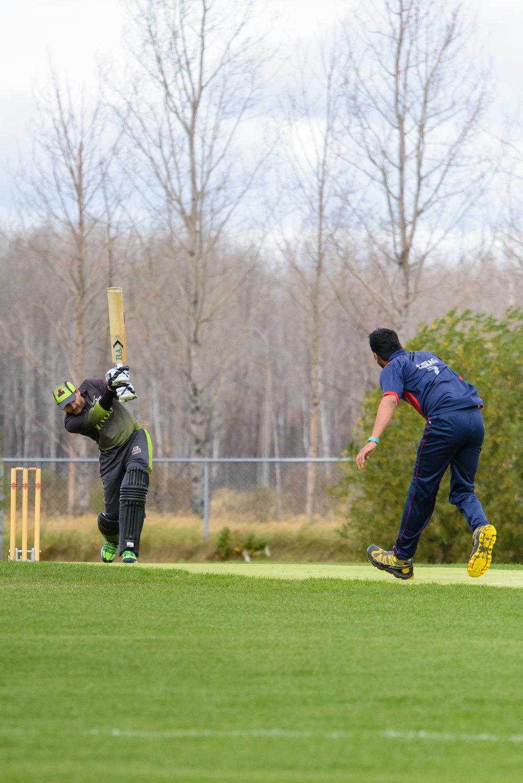 Cricket-0920.jpg