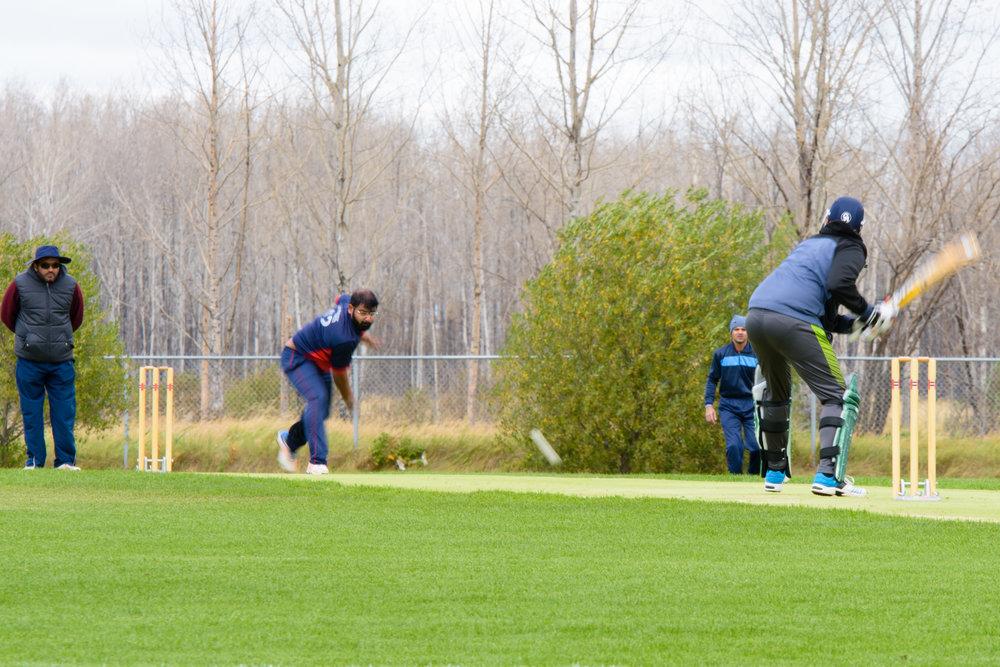 Cricket-0973.jpg