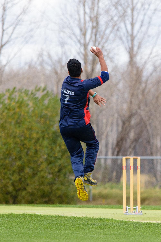 Cricket-1000.jpg