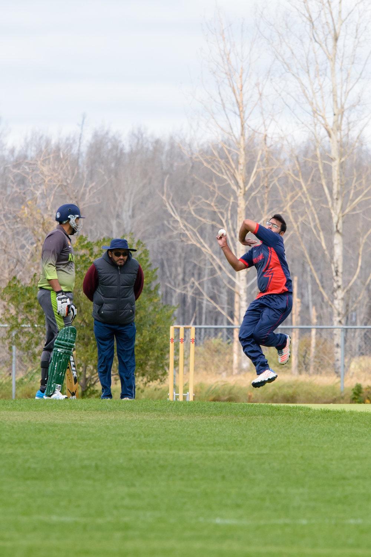 Cricket-1107.jpg