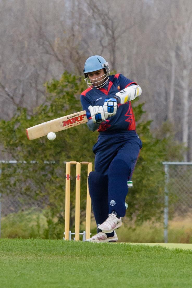 Cricket-1499.jpg