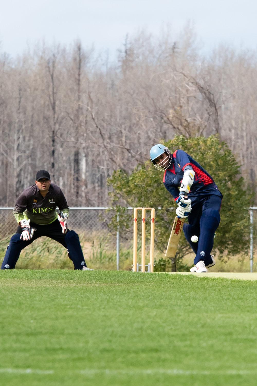 Cricket-1610.jpg
