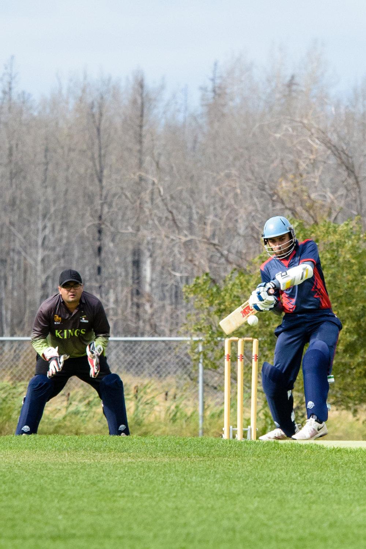 Cricket-1598.jpg