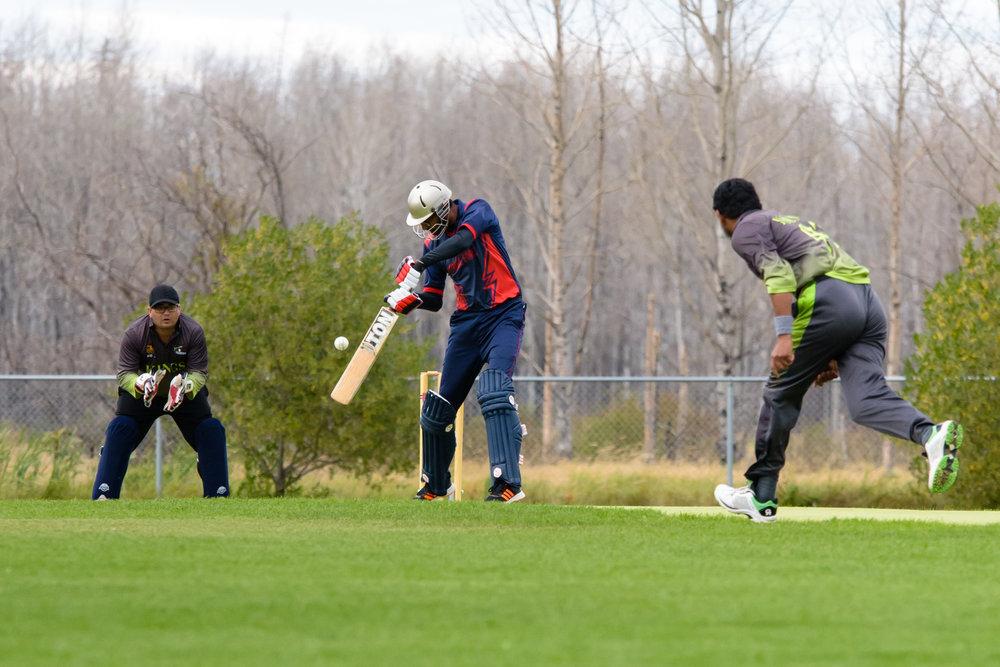Cricket-1717.jpg