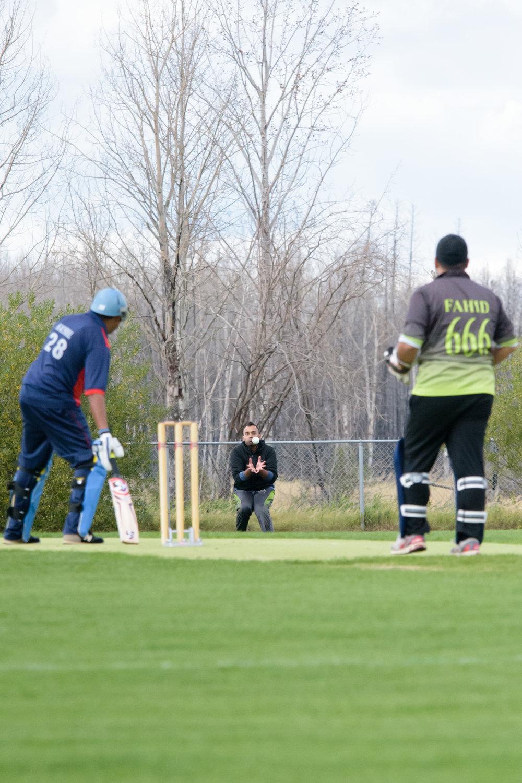 Cricket-2047.jpg