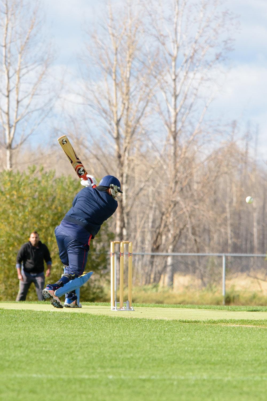 Cricket-2061.jpg