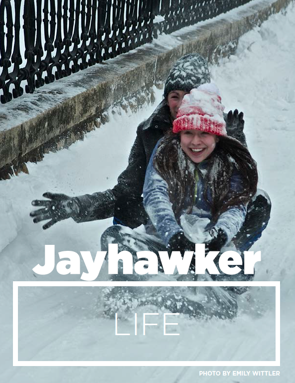 section divider / Jayhawker Annual Magazine
