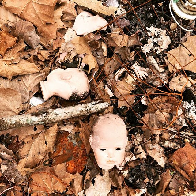This was a scene in the back yard of a house I was working on. Kinda random...kinda creepy. #dollparts #headsandhand #backyardfinds