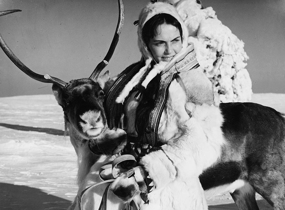 the white reindeer film
