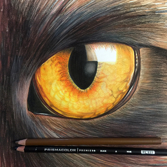 Colored_Pencil_Kitty.jpg