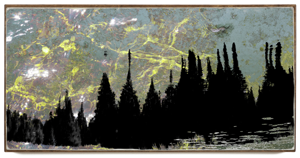 """Limelight"", 48x24x1.5"", Giclée print on watercolour paper, mounted on stained birch panel, limited edition (of 10), $1590"
