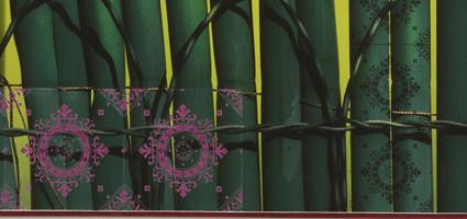 Green_Fence_clip.jpg