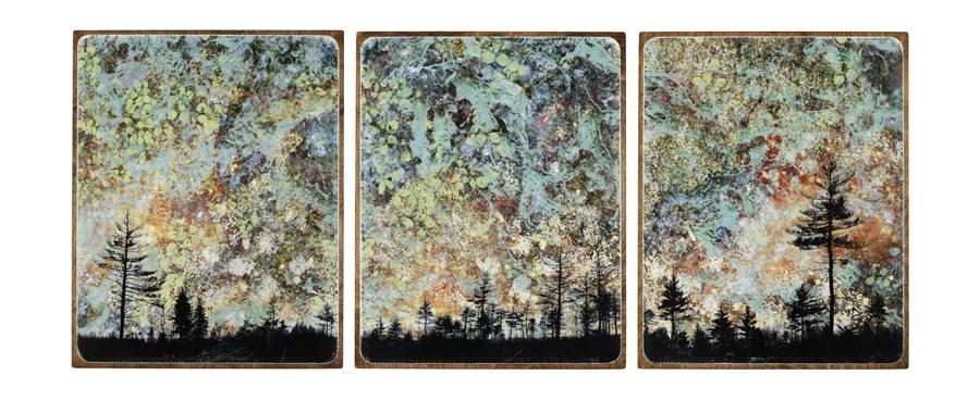 The Phoenix (triptych)