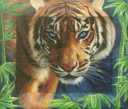 art_frame_tiger014.JPG
