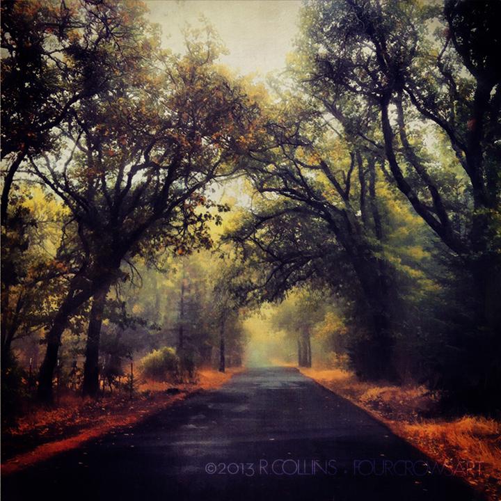 autumndrivend.jpg
