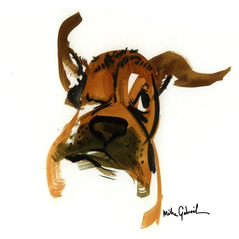 dogheadshake4X4 (2).jpg