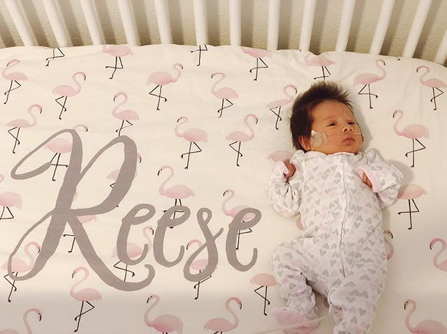 This is what my heart looks like now. Reese Ryder Rodriguez. A Grand granddaughter.