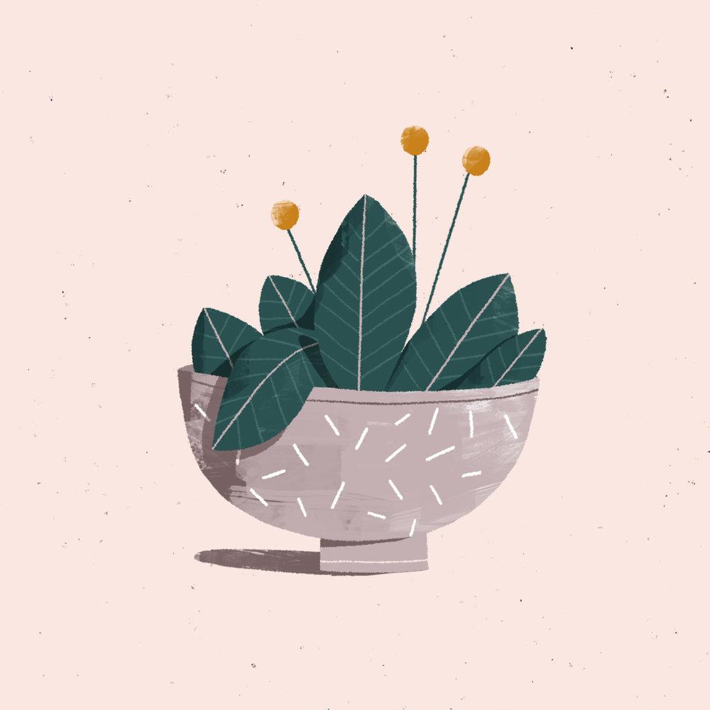 plant_merp.jpg