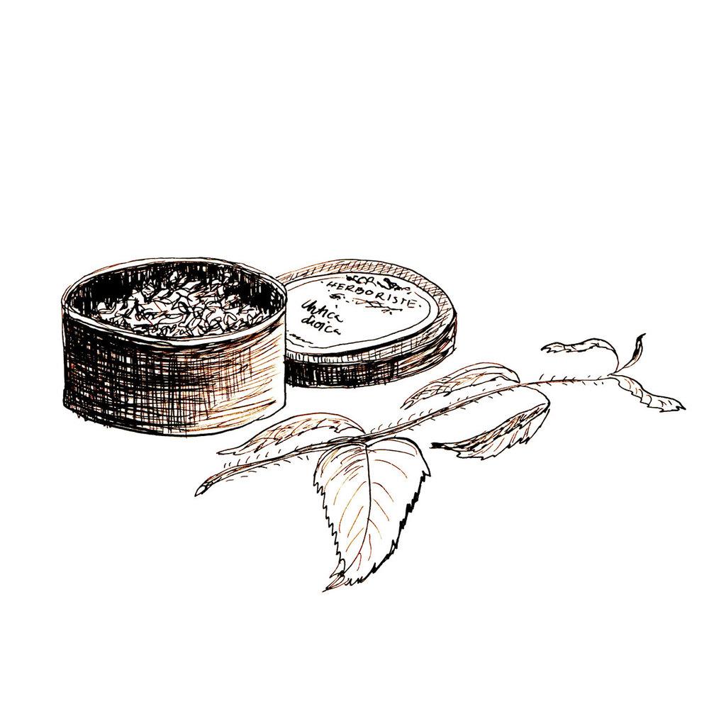 Herboriste-Nettle&Box.jpg