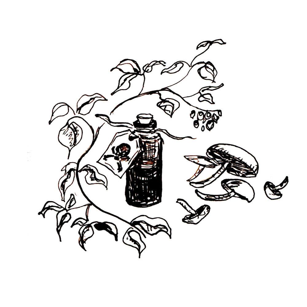 Herboriste-Poisons.jpg