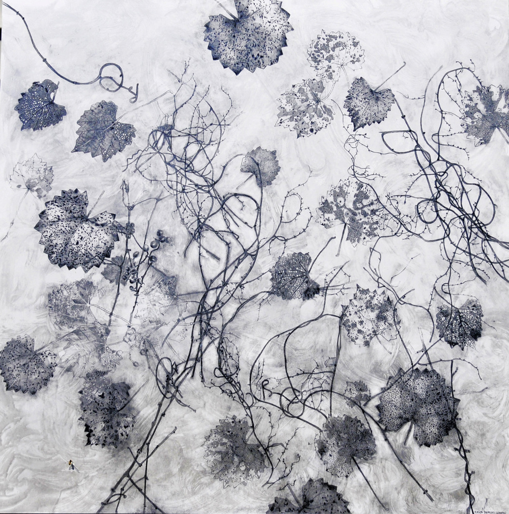 Graphite Series Vitis & Vines. acrylic and graphite on panel, 30,30