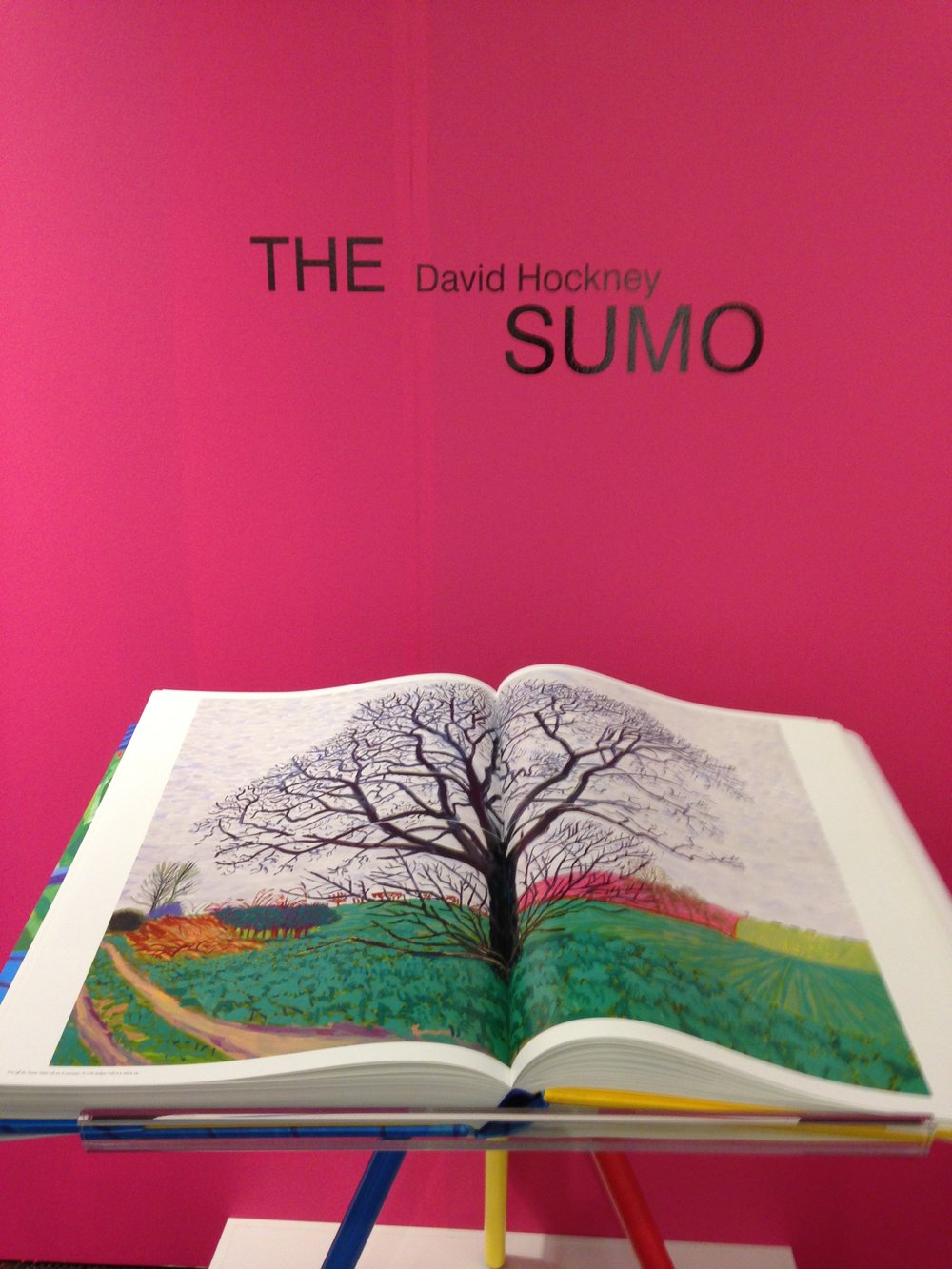 "Taschen's ""Sumo-sized"" David Hockney book, in an edition of 9,000, priced at $2,500.00"