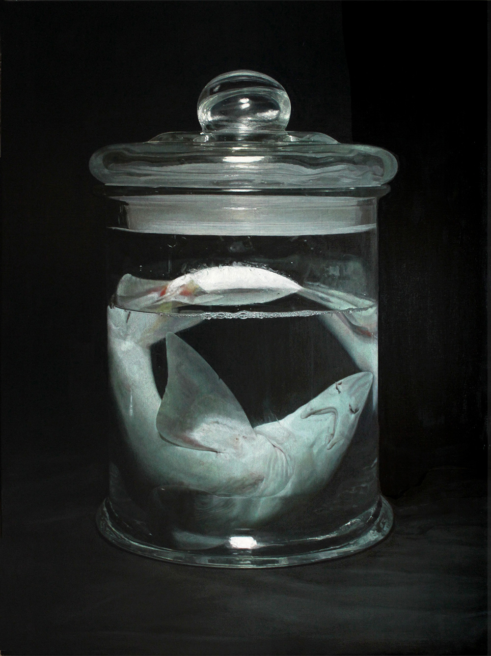 Shark (oil paint)