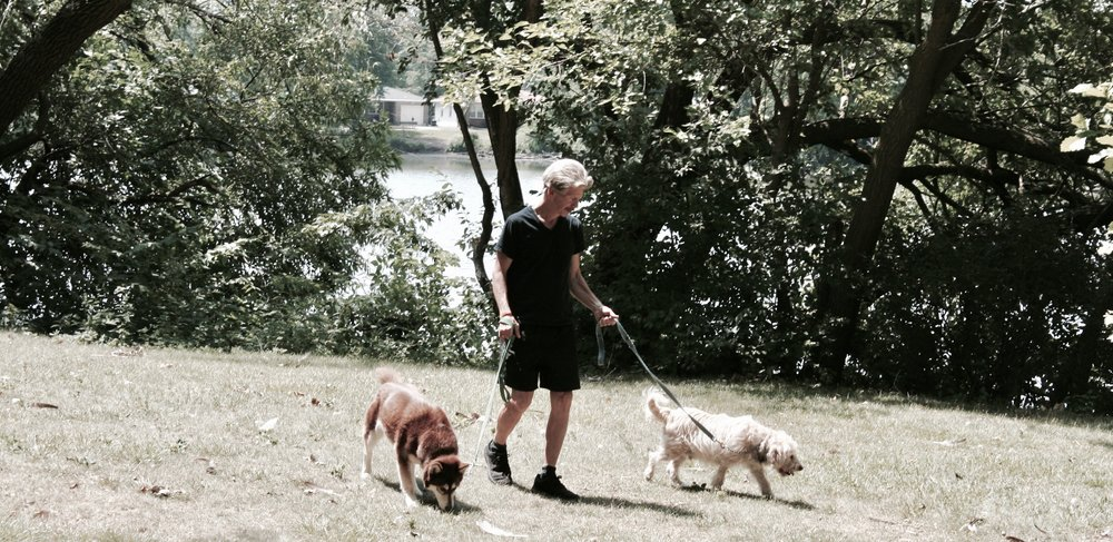 Photo by Menendez of Mark Hopping walking two of his rescued dogs.