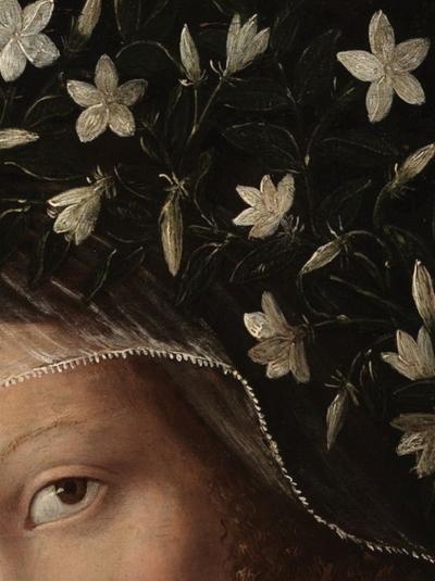 Santa Catherine crowned, Bartolomeo Veneto