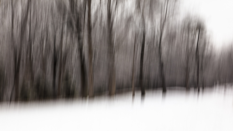 Winter's Park
