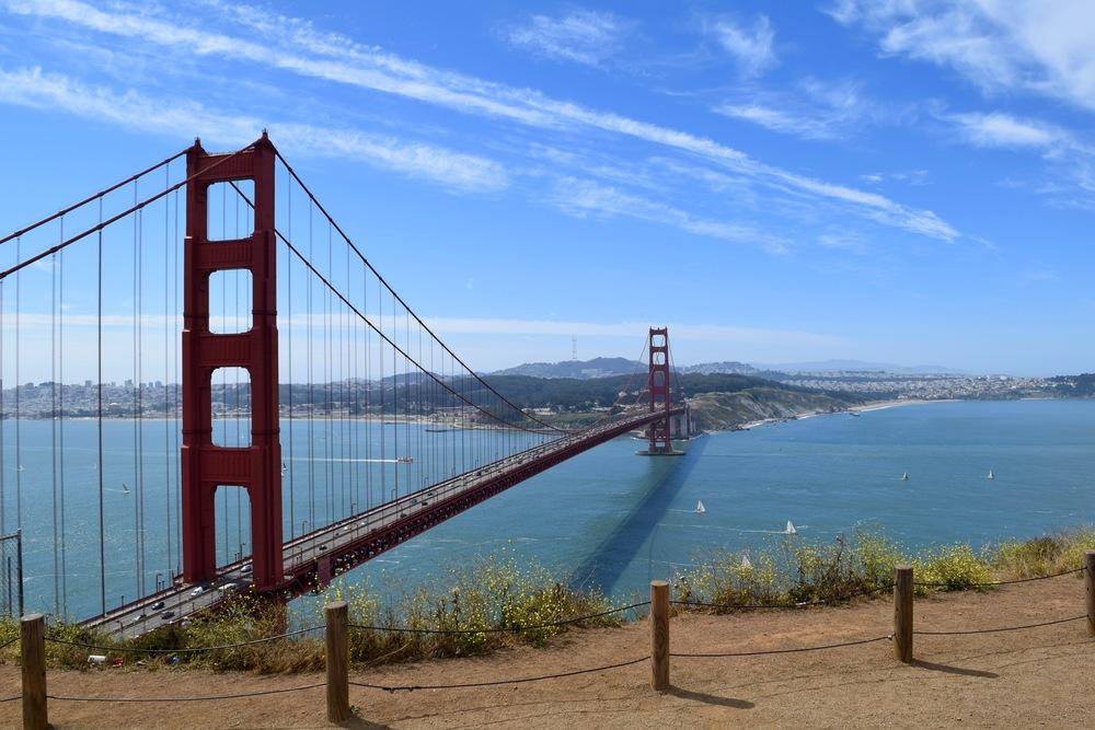 The Bridge! 🌉
